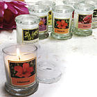 Scented Mini Jar Candles ~ Flowers of the World!