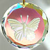 Sparkling Crystal Disc with Etched Butterfly.